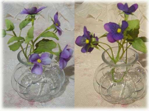 violetbg.jpg