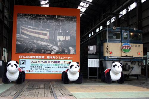blog-panda.jpg