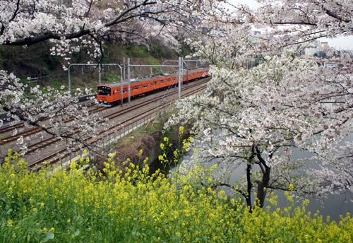 ichigaya-006.jpg