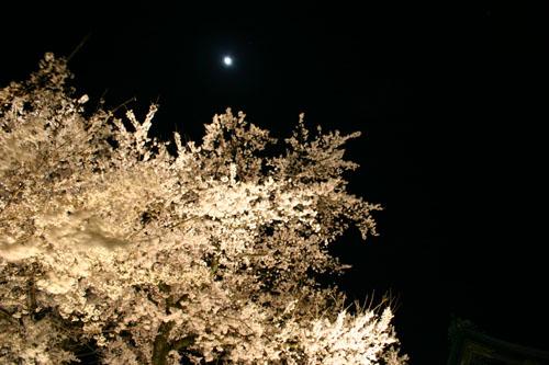 y-moon.jpg