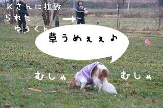 IMG_4894_Resized.jpg
