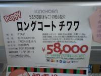 PAP_0555.jpg