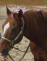 HorseBackRiding3