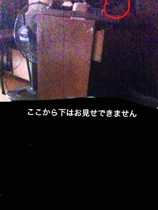1_1_20120109200402.jpg
