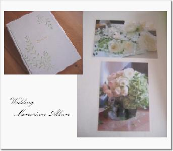 2008-11 wedding album 1