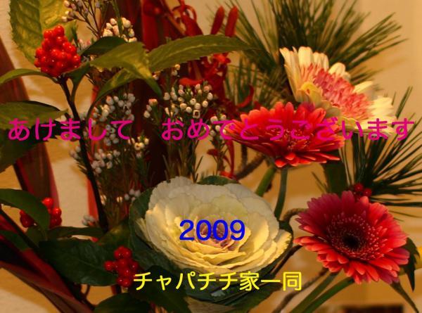 09syougatu_card#227;<div class=