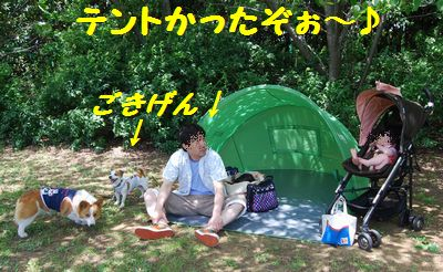 DSC_0037_20110523135629.jpg