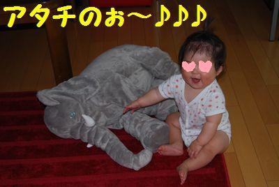 DSC_0060_20110711151809.jpg