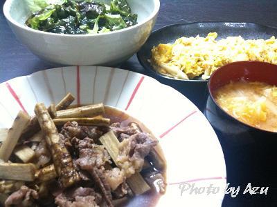 ごぼうと牛肉の煮物・チョレギサラダ・ごまネギ卵焼き・白菜のお味噌汁