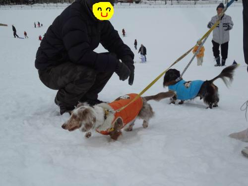 snap_chapuco_201213192714.jpg