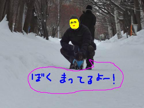 snap_chapuco_201215184433.jpg