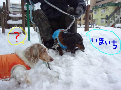 snap_chapuco_201215185818.jpg
