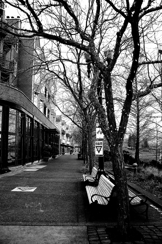 Portland downtown8