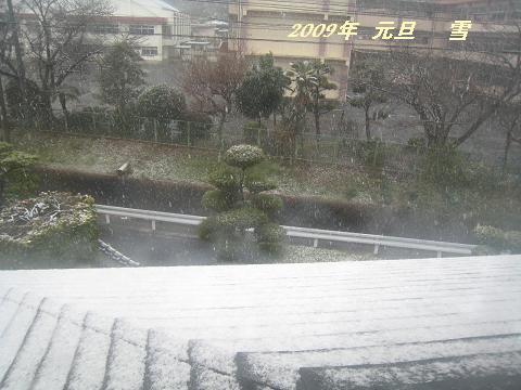 雪(2009年元旦)30