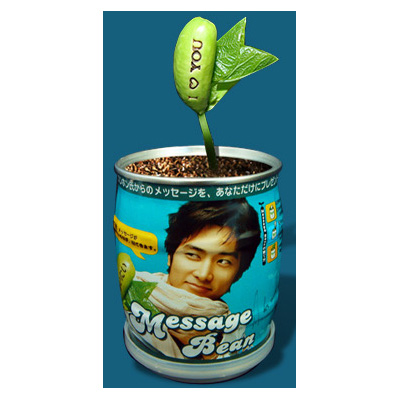 acc285スンホン豆缶