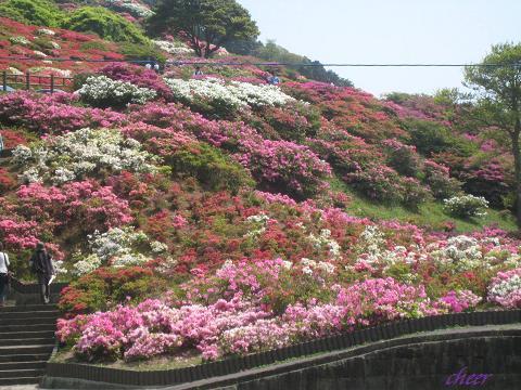長串山公園 016(30)