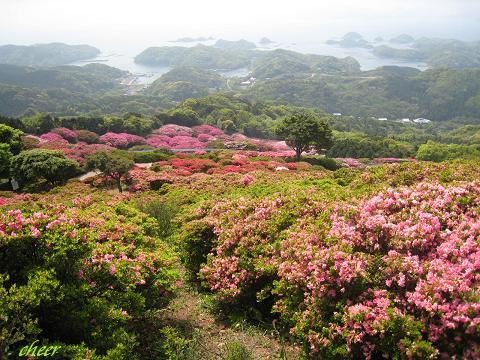 長串山公園 023(30)