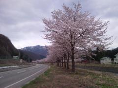 Photo053.jpg