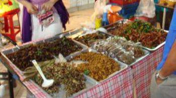 thailand musi