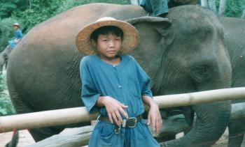 chiangmai elephant park