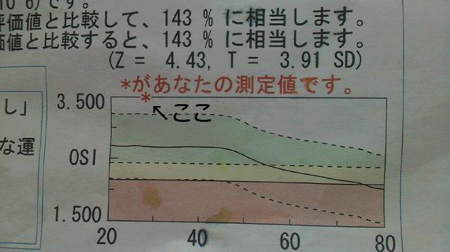 20110712180605.jpg