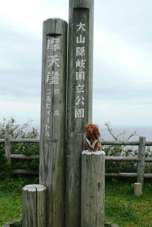 隠岐・西ノ島町