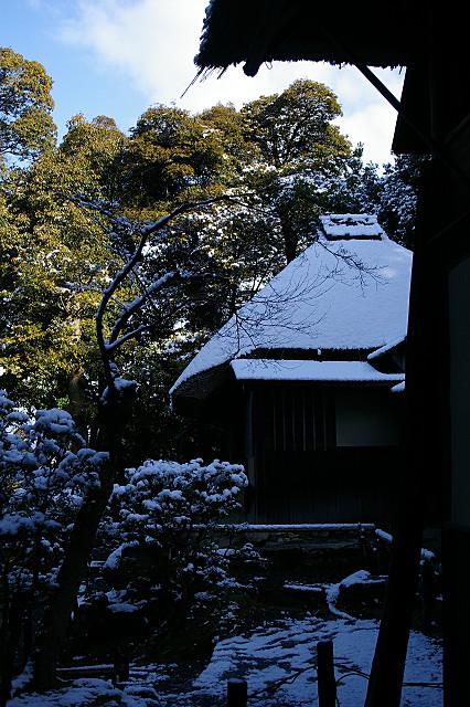 雪を背負い 木立に佇む 時雨亭
