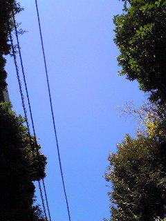 20081121_1.jpg