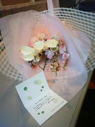 20090326_yumikoさんからお花1