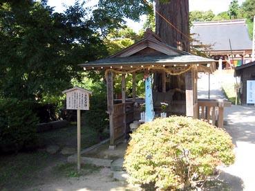ご神体は木:観音正寺
