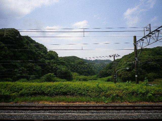 IMGP0324.jpg