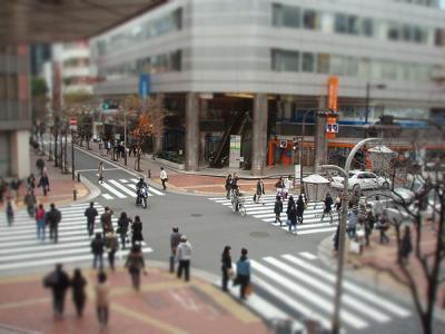 2007_05020001.jpg