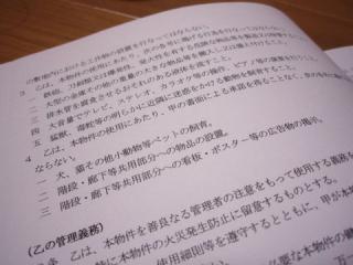 2007_12020009.jpg