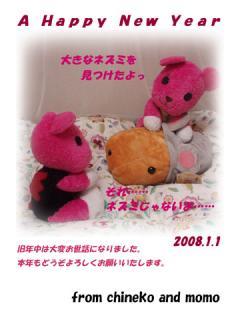 2008_01010000.jpg