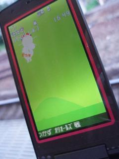 2008_09040011.jpg