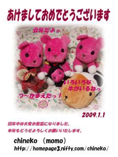 2009_01010000.jpg