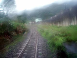 2009_01271037.jpg