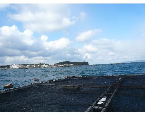 20090124堅田風景2