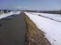 秋月橋河畔の堤防