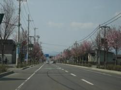 東神楽町 旭川空港へ向かう道