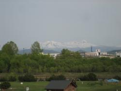 大雪山がきれいに見えました(^^)