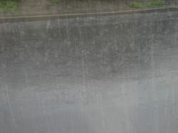 昨日の夕方はすごい雨でした