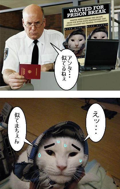 ★プリズンブレイク