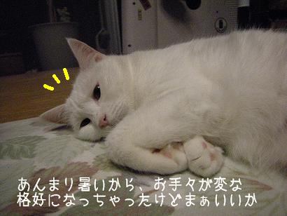 ★★ 熱帯夜2