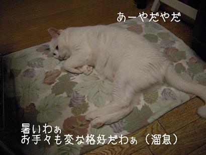 ★★ 熱帯夜3