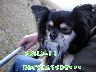 DSCN02471.jpg