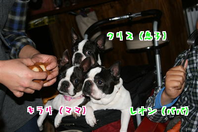 IMG_3937.jpg