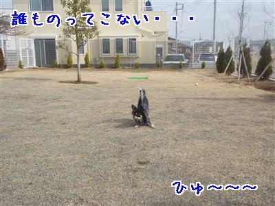 P2150049.jpg