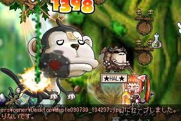 Maple090730_134321.jpg