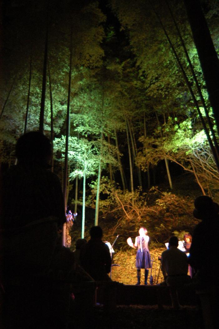 竹林コンサート